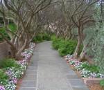 дорожки в саду своими руками как правильно сделать дорожки