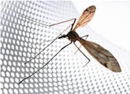 москитные сетки - лучшая защита от насекомых