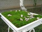 мини сад камней в японском стиле